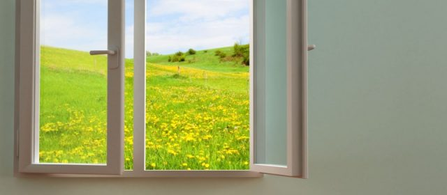 Save Money when You Select to Work with a Trusted Window Service