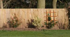 Installing a New Fence: Why You Should Consult with an Expert