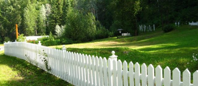 Best Types of Wood for Fencing