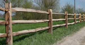 A Wood Fence Can Be Both Beautiful and Diverse
